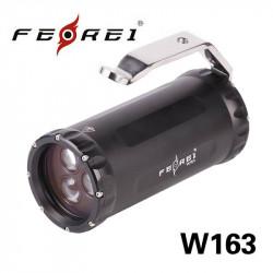 FEREI W163